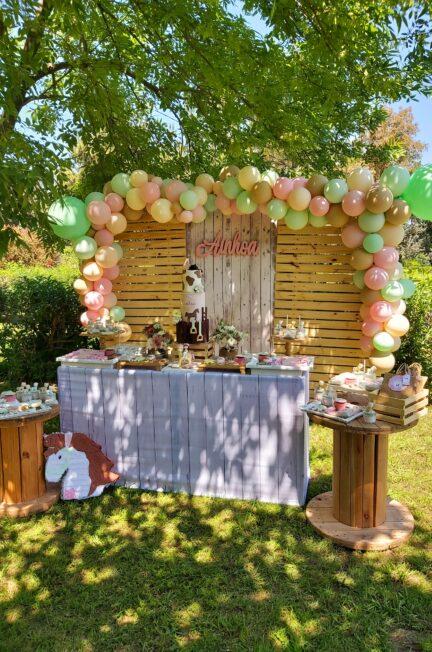 Ambientaciones al aire libre, cumpleaños tematicos